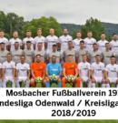 Senioren: Der Kader für die Saison 2018/2019 der beiden Seniorenteams