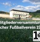 Bericht zur Mitgliederversammlung des Mosbacher Fußballvereins 1919 e.V. am 26. April 2019
